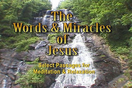 """Words & Miracles of Jesus"" The good word to me... - $5.88"