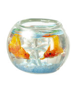 Goldfish in Bowl g7775 Miniatures World blue bottom Dollhouse Miniature - $14.99