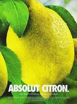 Absolut Citron 2002 Vodka Photographic Art Ad Sweden - $14.99