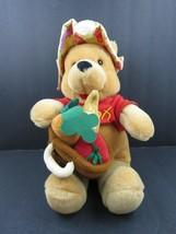 "Winnie Pooh Disney Store Veggie Garden Pooh 12"" Plush Stuffed Animal Farmer - $29.02"