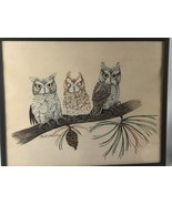 KARL E KARALUS  Framed OWL PICTURE 20x16 - $28.71