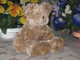 Boyds Brown Bear with Rattle 16 Inch Baby Safe 3809052 2006 - $88.88