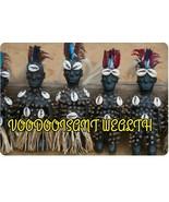 Voodooisant Wealth Ritual - $125.00