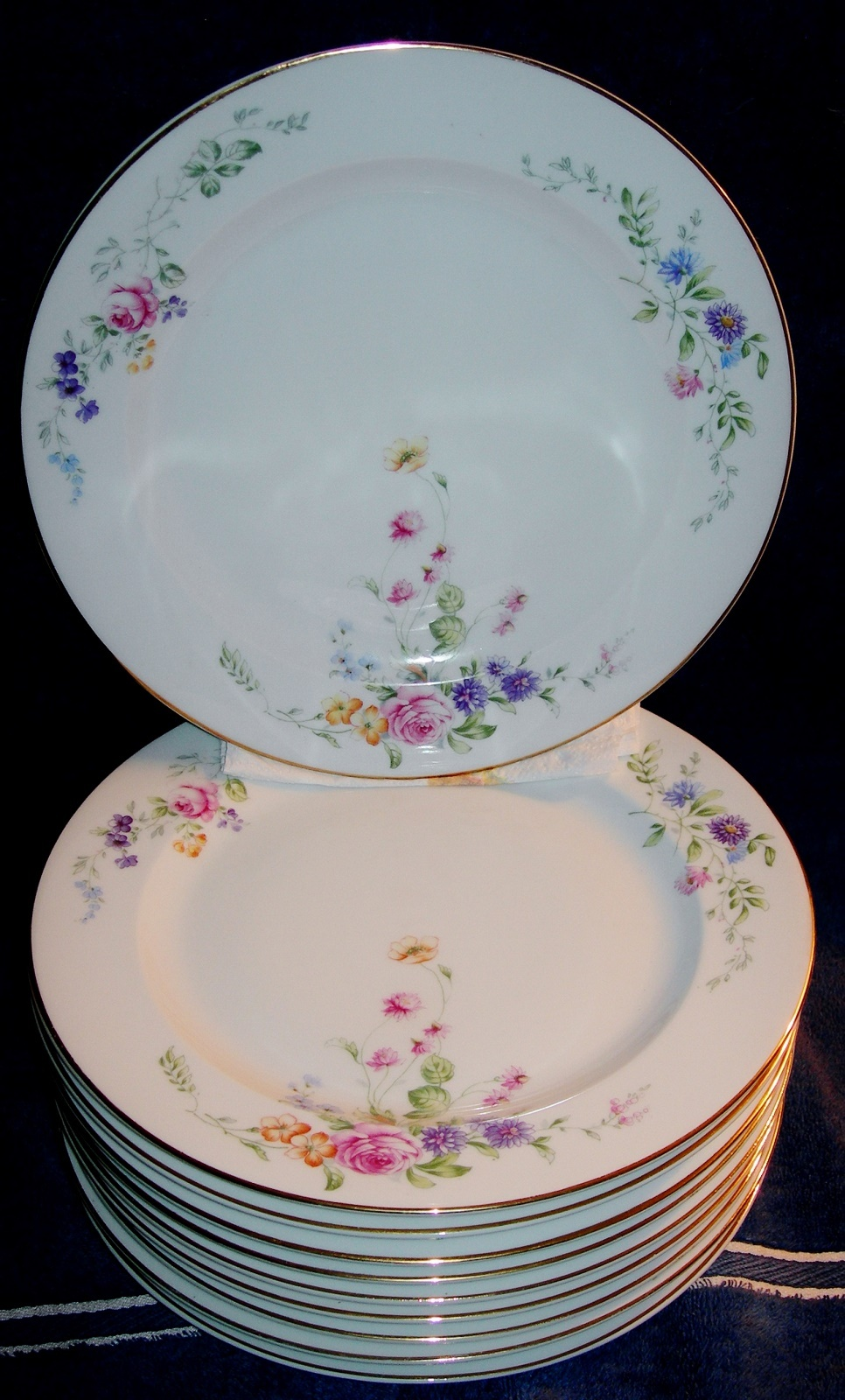 10 Hutschenreuther Bavaria Plates \u0026 13-1/2\  Platter Beautiful Floral Swag Spray - $35.00 & Hutschenreuther Selb Plates: 9 listings
