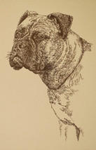 BULLMASTIFF DOG ART GIFT Stephen Kline will draw your dogs name free Pri... - $49.95