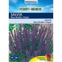 Ferry-Morse 125-Milligrams Sage Seeds (L0000) - $18.76