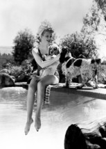 Lucille Ball 1940's pose in swimsuit sitting on diving board with dogs 5... - $5.75