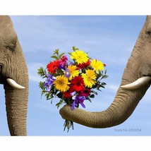 "Elephant Date 16X20"" Paint By Number Kit DIY Acrylic Painting on Canvas ... - $9.59"