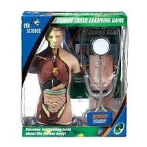 Edu Science Human Torso Learning Game with Bonus Stethoscope image 2