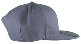 Dissizit Smoke Bowls Skateboard D Bones Ramp Grey Snapback Baseball Hat NWT image 3