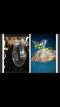 "Decorative Glass Vase 9"" with bag Of Citrus Potpourri - $44.99"