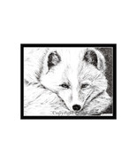 Arctic Fox Pen and Ink Print - $24.00