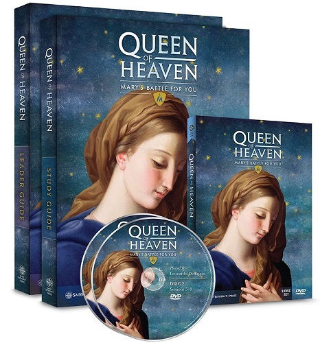 heaven  leader guide  study guide  2 dvd set  streaming video group license  parish set 3d 1  1