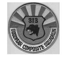 US Civil Air Patrol CAP Arizona Goodyear Composite Squadron 313 USAF AUX sm grey - $9.99