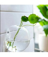 Garden Supply Home Hanging Glass Vase Flower Planter Pot Terrarium Conta... - $9.99+