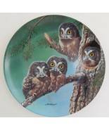 Knowles Beginning to Explore Boreal Owls Plate Joe Thornbrugh Baby Owls ... - $29.70