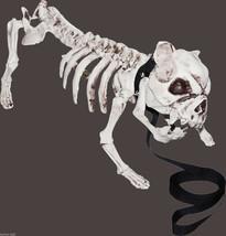 Realistic Dead Pet ZOMBIE SKELETON PIT BULL DOG Creepy Halloween Prop De... - $39.57