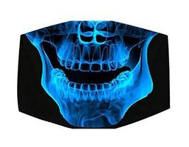 Hot Sale The skeleton Jaw Sanitary Mouth Mask, The Fashionasta Collectio... - $11.84