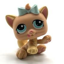 Littlest Pet Shop LPS Kitten Teal Blue Eyes bow Cat Playing #1335 - $7.66