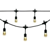 Enbrighten Vintage LED Cafe String Lights Black 24 Foot Length 12 Impact - €62,00 EUR