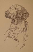 Vizsla Dog Art Print Lithograph #56 Stephen Kline adds your dogs name free. GIFT - $49.95