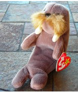 Ty Beanie Babies Baby Jolly the Walrus Retired Collectible 1996 - $3.50