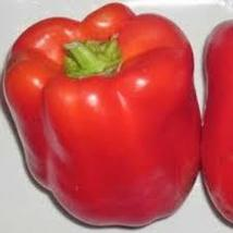 Chinese Giant Red Bell Pepper 25 seeds - $18.29