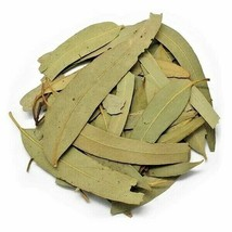 Natural Quality Dried Eucalyptus Leaves Ayurveda Tea Spices of the World - $11.99