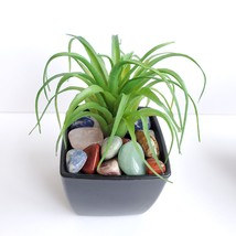 Faux Air Plant with Natural Polished Stones in Planter, Tumbled Rocks, Airplant image 2