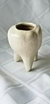 MOLAR TOOTH Monarch Jim AMROU GROTTO Porcelain Toothpick Holder SOUVENIR - $9.00