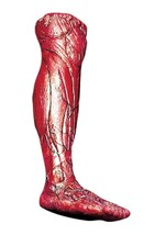 Skinned Bloody Latex Right Leg Prop Gross Gory Creepy Veins Halloween 85051 - £39.19 GBP