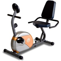 Recumbent Exercise Bike Adjustable Magnetic w Track Progress Pedals Stay... - $221.84