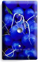 Blue Radishes Light Dimmer Cable Plate Cover Vegan Vegetarian New Kitchen Decor - $10.99