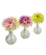 Daisy with Glass Vase (Set of 3) - $50.41