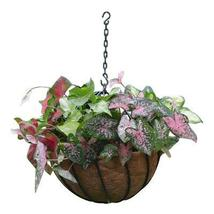"Hanging Spheres with Liners - Set of 6 12"" or 16"" - €99,73 EUR+"