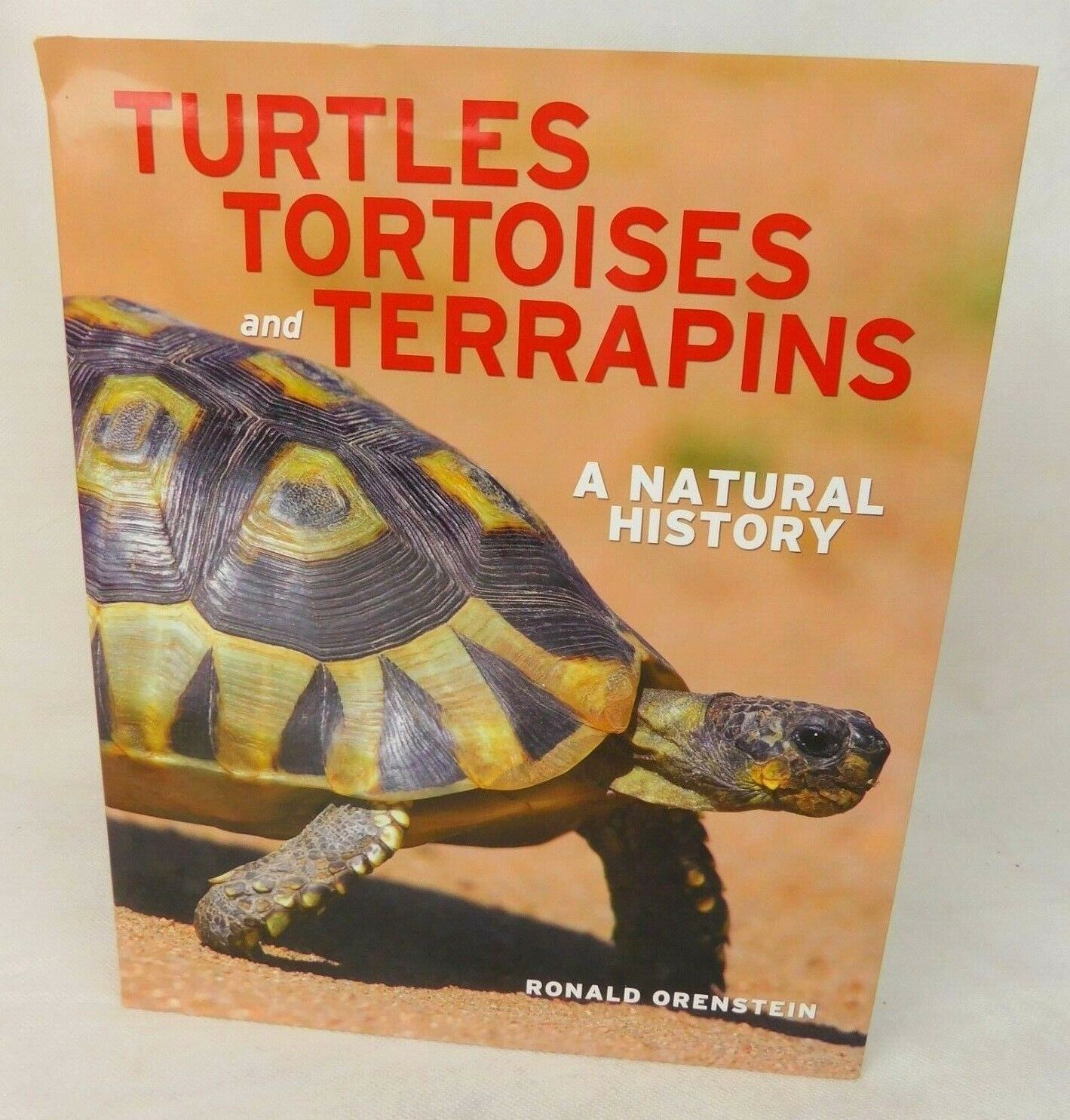 Primary image for Turtles Tortoises and Terrapins Coffee Table Book Nature Wildlife Orenstein