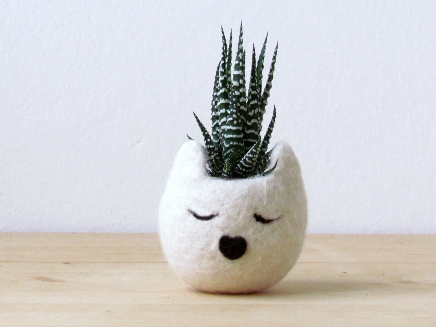 Cat planter / Small pot for succulents / white Cat head planter / Felt succulent