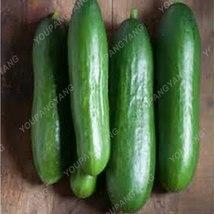 50Pcs Rare Purple Cucumber Delicious Vegetables (23), HZ Healthy Vegetab... - $8.89