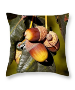 Acorns pillow thumbtall