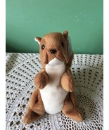 6 Inch Ty Beanie Baby Nuts Brown and White Squirrel Childrens Collectible - $6.15