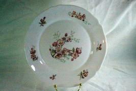Arcopal Florentine Dinner Plate - $5.33