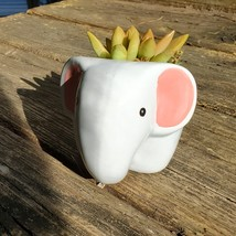 "Elephant Planter & Succulent, 4"" grey ceramic animal, Golden Glow Sedum Adolphi  image 4"