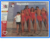 David Charvet Nicole Eggert teen magazine pinup clipping Shirtless Baywatch Bop