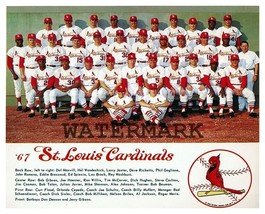 MLB 1967 World Series Champion St. Louis Cardinals Color 8 X 10 Photo Picture - $5.99