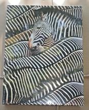 """Springbok Yipes! Stripes! Zebra Jigsaw Puzzle 500 pc 18"""" x 23 1/2"""" USA Hallmark - $44.95"""