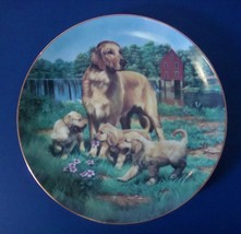 Hamilton Collection Golden Retrievers, Classic Sporting Dogs Plate Colle... - $8.99