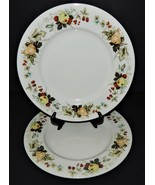 "2 Royal Doulton Miramont Dinner Plates China 10 5/8"" TC1022 Fruit Pattern - $32.66"