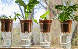 Water Wick Plant Wick Watering Cord 25ft (3mm) DIY Self-watering Planter - $4.99