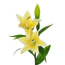 George Jimmy Artificial Flowers High Simulation Lily Home Office Restaurant Flow - $16.77