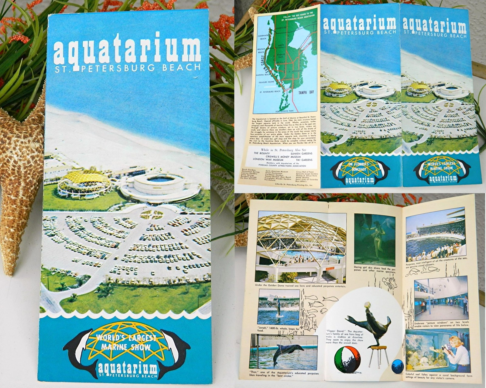 Vintage Aquatarium Brochure Aquarium St Pete Beach Florida 1960s